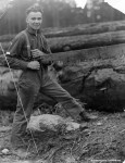 bercot sawing